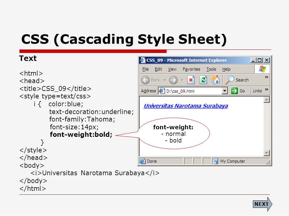 CSS (Cascading Style Sheet) Text CSS_10 p { color:blue; font-family:Tahoma; font-size:14px; font-weight:bold; font-style:italic; } Universitas Narotama Surabaya NEXTBACK