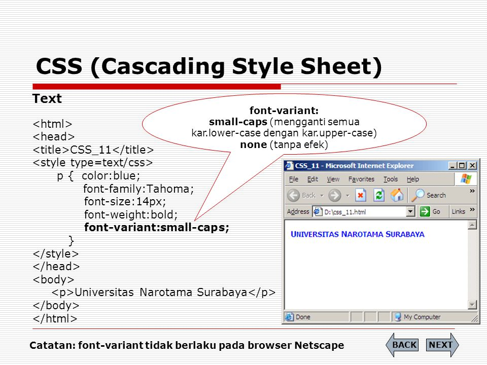 CSS (Cascading Style Sheet) Link Link Properties:  A:link  A:hover  A:active NEXT