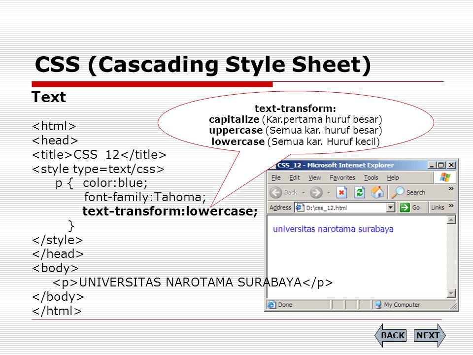 CSS (Cascading Style Sheet) Link Definisi style link:  A:link -> memberikan efek pada saat normal (unlink)  A:hover -> memberikan efek pada saat mouse pointer diatas object  A:active -> memberikan efek setelah event click NEXTBACK