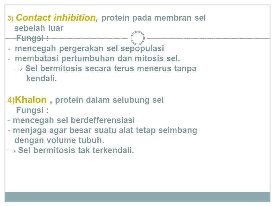 3) Contact inhibition, protein pada membran sel sebelah luar Fungsi : - mencegah pergerakan sel sepopulasi - membatasi pertumbuhan dan mitosis sel. →