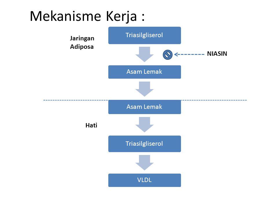 Mekanisme Kerja : Triasilgliserol Asam Lemak Triasilgliserol VLDL Jaringan Adiposa Hati NIASIN