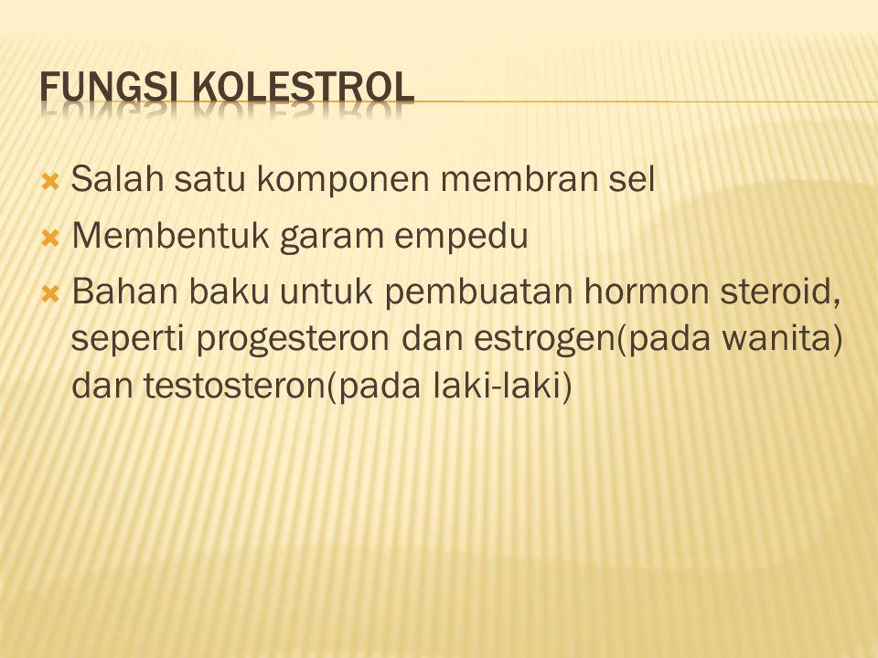  Salah satu komponen membran sel  Membentuk garam empedu  Bahan baku untuk pembuatan hormon steroid, seperti progesteron dan estrogen(pada wanita)