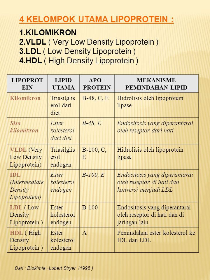 4 KELOMPOK UTAMA LIPOPROTEIN : 1.KILOMIKRON 2.VLDL ( Very Low Density Lipoprotein ) 3.LDL ( Low Density Lipoprotein ) 4.HDL ( High Density Lipoprotein