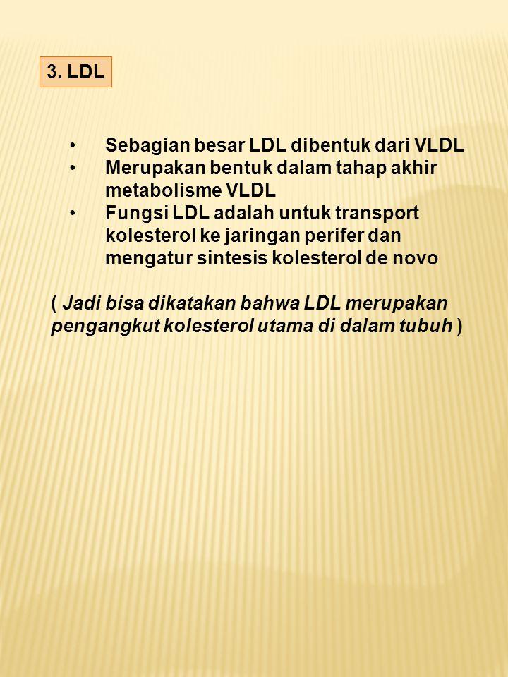 3. LDL Sebagian besar LDL dibentuk dari VLDL Merupakan bentuk dalam tahap akhir metabolisme VLDL Fungsi LDL adalah untuk transport kolesterol ke jarin