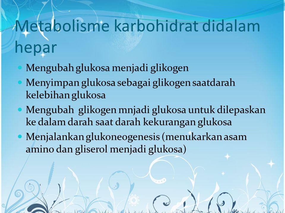 Metabolisme karbohidrat didalam hepar Mengubah glukosa menjadi glikogen Menyimpan glukosa sebagai glikogen saatdarah kelebihan glukosa Mengubah glikog
