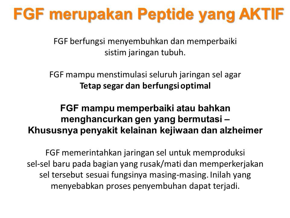 FGF merupakan Peptide yang AKTIF FGF berfungsi menyembuhkan dan memperbaiki sistim jaringan tubuh. FGF mampu menstimulasi seluruh jaringan sel agar Te