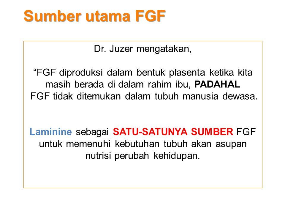 """Sumber utama FGF Dr. Juzer mengatakan, """"FGF diproduksi dalam bentuk plasenta ketika kita masih berada di dalam rahim ibu, PADAHAL FGF tidak ditemukan"""