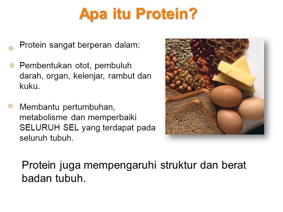 Apa itu Protein? Protein sangat berperan dalam: Pembentukan otot, pembuluh darah, organ, kelenjar, rambut dan kuku. Membantu pertumbuhan, metabolisme