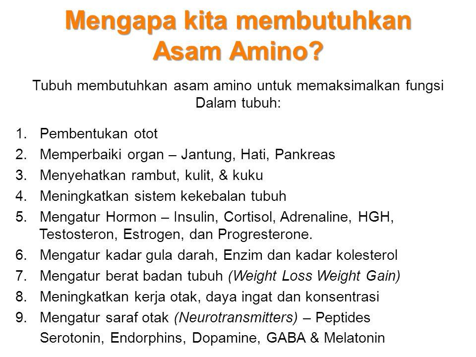 Mengapa kita membutuhkan Asam Amino? Tubuh membutuhkan asam amino untuk memaksimalkan fungsi Dalam tubuh: 1. Pembentukan otot 2. Memperbaiki organ – J