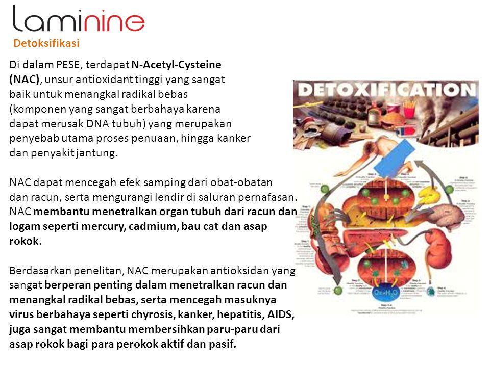 Detoksifikasi Di dalam PESE, terdapat N-Acetyl-Cysteine (NAC), unsur antioxidant tinggi yang sangat baik untuk menangkal radikal bebas (komponen yang