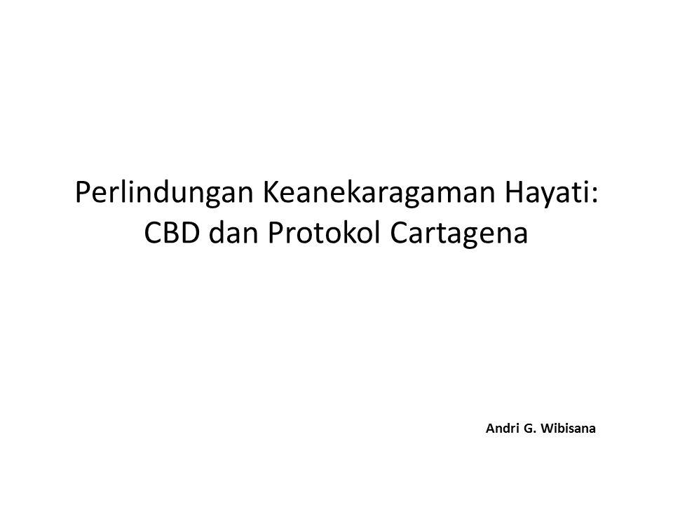 Outline I.Pengantar tentang Keanekaragaman Hayati II.CBD a.Posisi b.Prinsip c.Isi III.Protokol Cartagena a.Prinsip b.Isi c.Implementasi di Indonesia 2