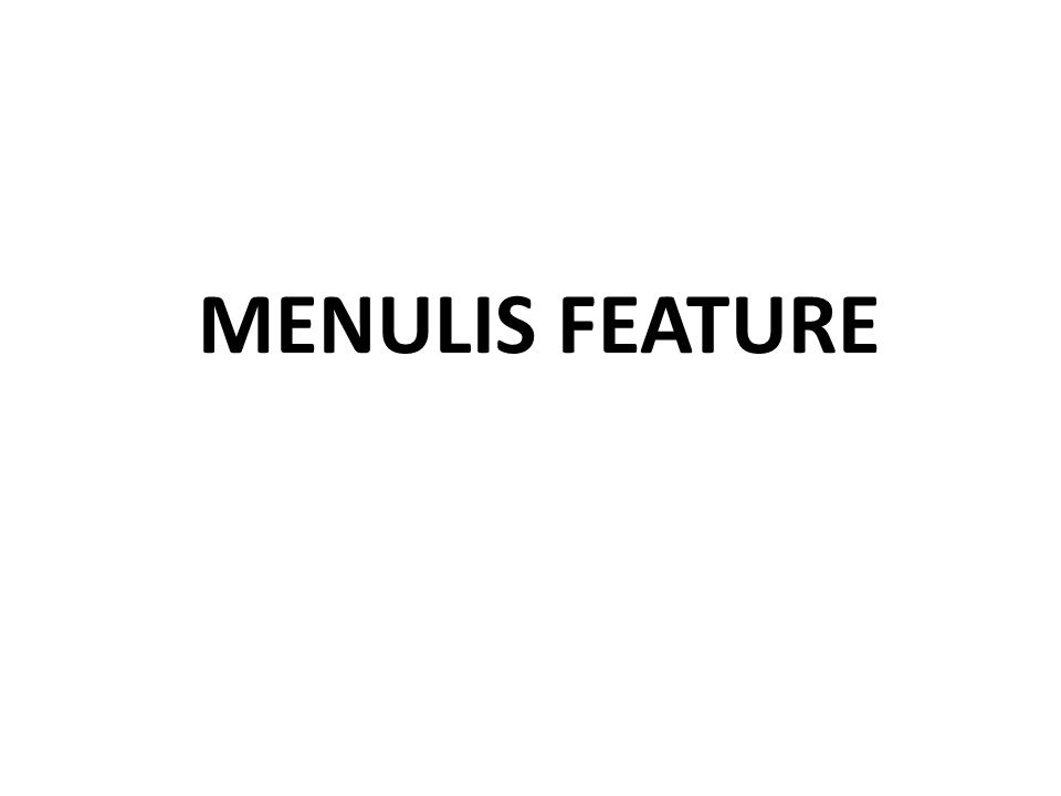 MENULIS FEATURE