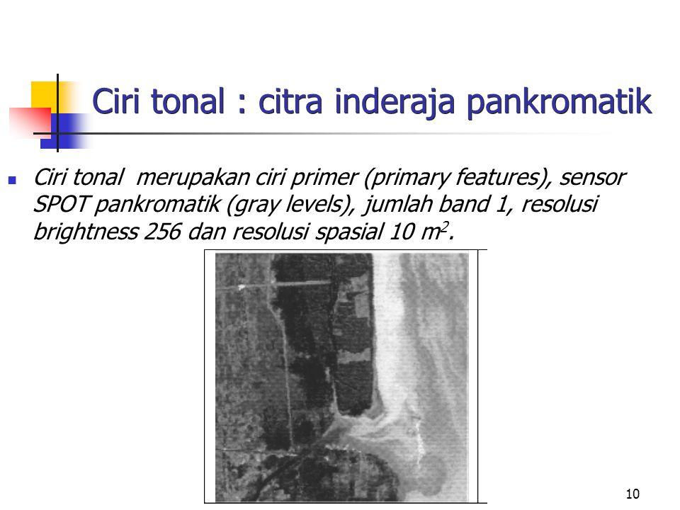 10 Ciri tonal : citra inderaja pankromatik Ciri tonal merupakan ciri primer (primary features), sensor SPOT pankromatik (gray levels), jumlah band 1, resolusi brightness 256 dan resolusi spasial 10 m 2.