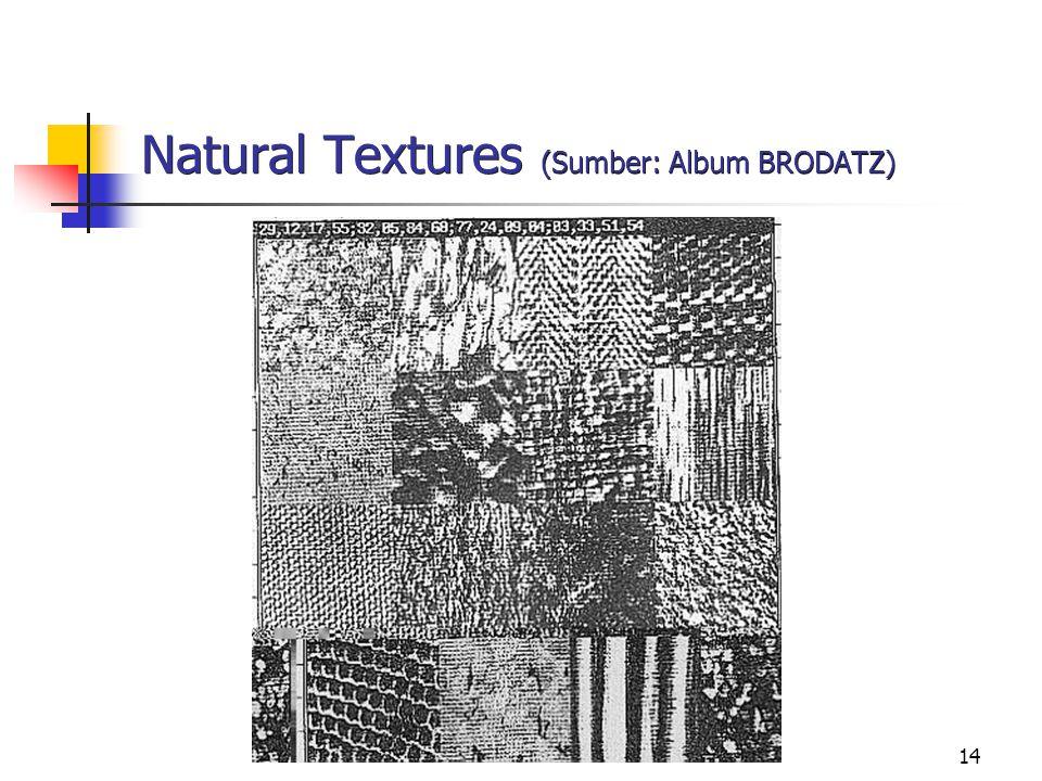 14 Natural Textures (Sumber: Album BRODATZ)