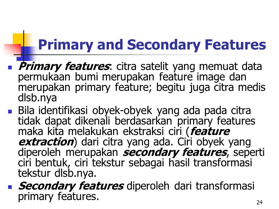 24 Primary and Secondary Features Primary features: citra satelit yang memuat data permukaan bumi merupakan feature image dan merupakan primary featur