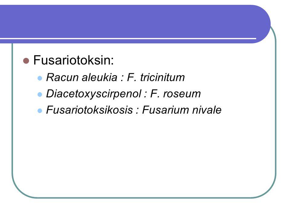 Fusariotoksin: Racun aleukia : F. tricinitum Diacetoxyscirpenol : F. roseum Fusariotoksikosis : Fusarium nivale