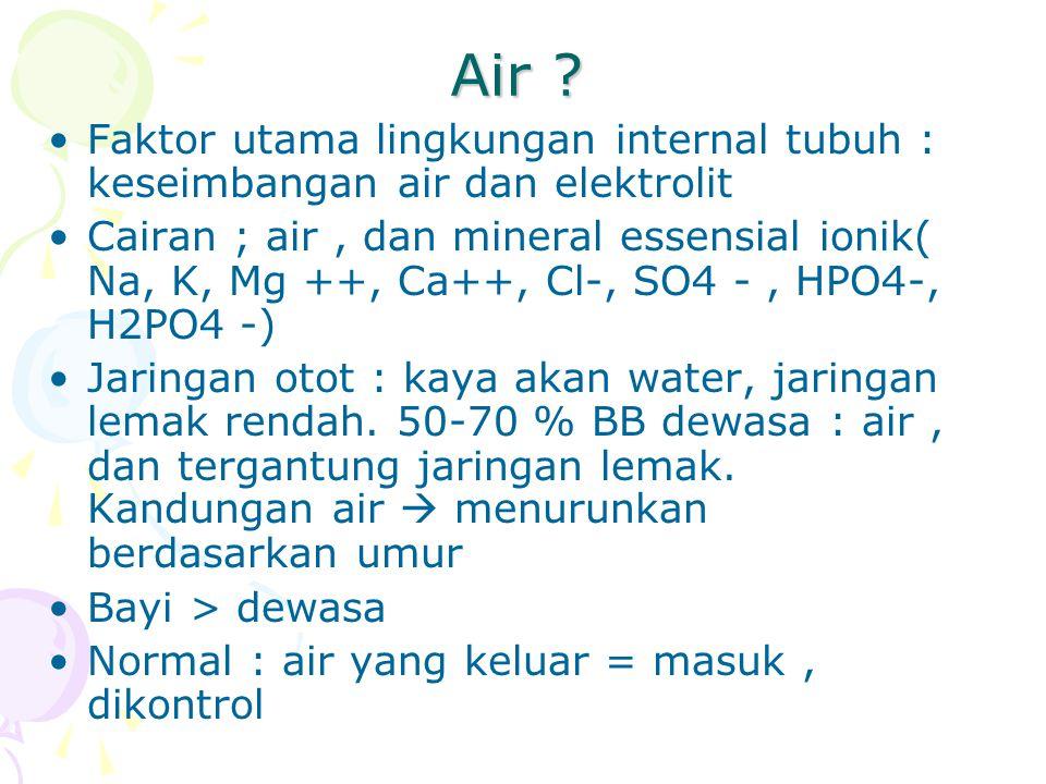 Air ? Faktor utama lingkungan internal tubuh : keseimbangan air dan elektrolit Cairan ; air, dan mineral essensial ionik( Na, K, Mg ++, Ca++, Cl-, SO4