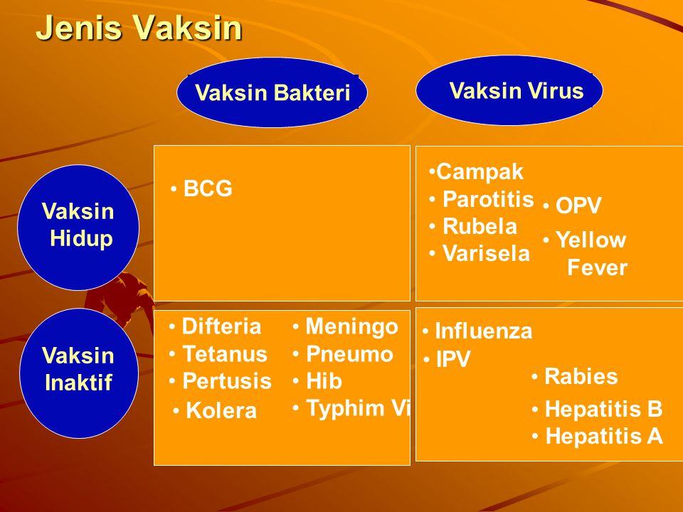 Vaksin BakteriVaksin Virus Vaksin Hidup BCG Difteria Tetanus Pertusis Meningo Pneumo Hib Typhim Vi Kolera Campak Parotitis Rubela Varisela OPV Yellow Fever Influenza Hepatitis B Hepatitis A IPV Rabies Vaksin Inaktif Jenis Vaksin