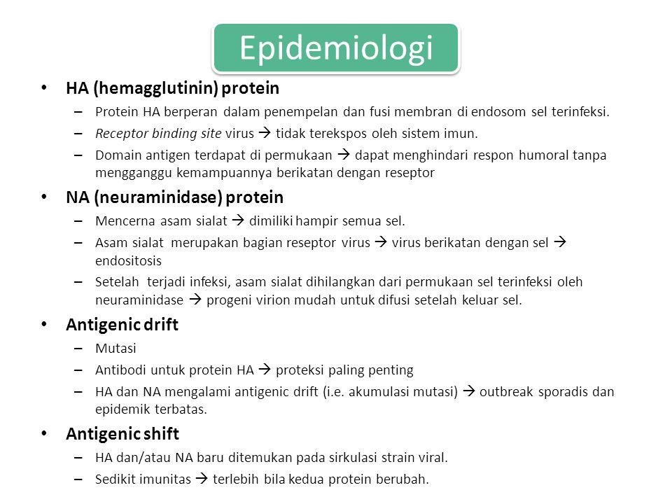 Epidemiologi HA (hemagglutinin) protein – Protein HA berperan dalam penempelan dan fusi membran di endosom sel terinfeksi.