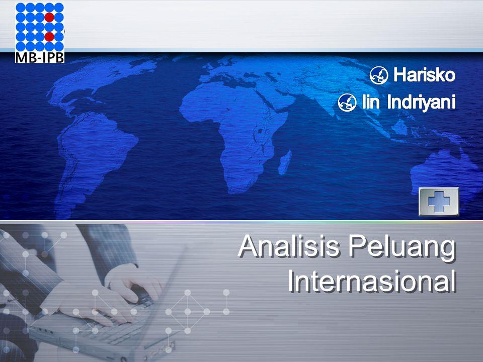 LOGO Analisis Peluang Internasional