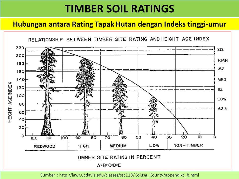 Hubungan antara Rating Tapak Hutan dengan Indeks tinggi-umur Sumber : http://lawr.ucdavis.edu/classes/ssc118/Colusa_County/appendixc_b.html TIMBER SOIL RATINGS