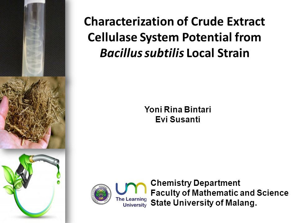Characterization of Crude Extract Cellulase System Potential from Bacillus subtilis Local Strain Yoni Rina Bintari Evi Susanti Chemistry Department Faculty of Mathematic and Science State University of Malang.
