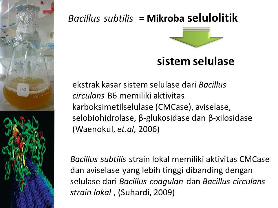 Sistem selulase = Enzim Indusibel Dipengaruhi oleh banyak sedikitnya Induser Produksi sistem selulase oleh B.