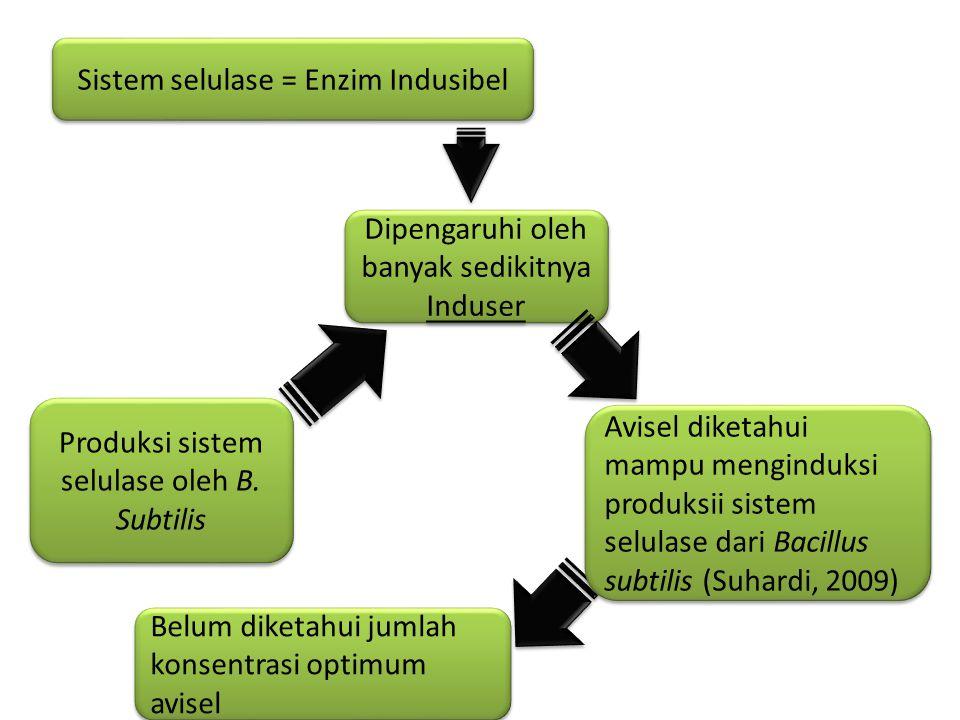 Sistem selulase = Enzim Indusibel Dipengaruhi oleh banyak sedikitnya Induser Produksi sistem selulase oleh B. Subtilis Avisel diketahui mampu mengindu