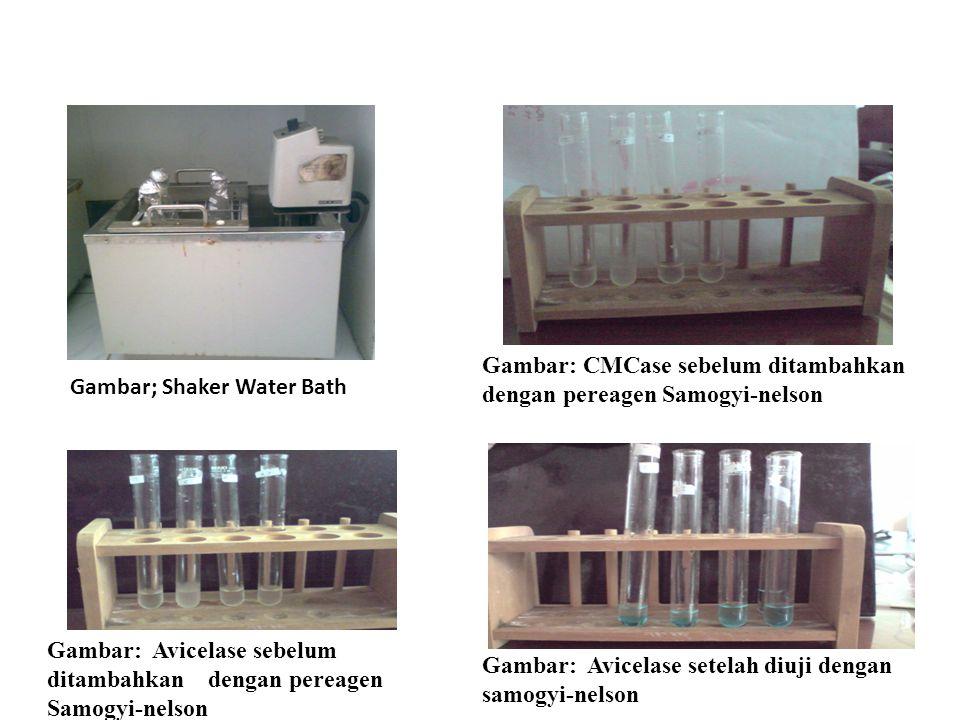 Gambar; Shaker Water Bath Gambar: CMCase sebelum ditambahkan dengan pereagen Samogyi-nelson Gambar: Avicelase sebelum ditambahkan dengan pereagen Samo