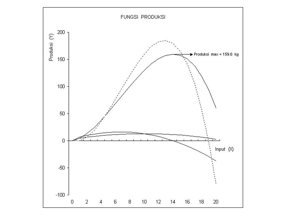 Beberapa Konsep Penting : TPP : Total Physical Product (Total Produksi) APP : Average Physical Product (Rata-rata Produksi) MPP : Marginal Physical Product (Produk Marjinal) EP : Elastisitas Produksi Pembagian Zone Produksi Konsep Efisiensi /Optimasi