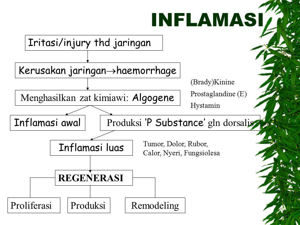 INFLAMASI Iritasi/injury thd jaringan Kerusakan jaringan  haemorrhage Menghasilkan zat kimiawi: Algogene Inflamasi awal Produksi 'P Substance' gln dorsalis Inflamasi luas REGENERASI ProliferasiProduksiRemodeling (Brady)Kinine Prostaglandine (E) Hystamin Tumor, Dolor, Rubor, Calor, Nyeri, Fungsiolesa