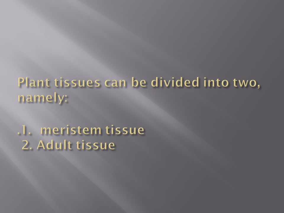 Meristem tissue Meristem tissue is a tissue that consists of a group of young plant cells are actively dividing.