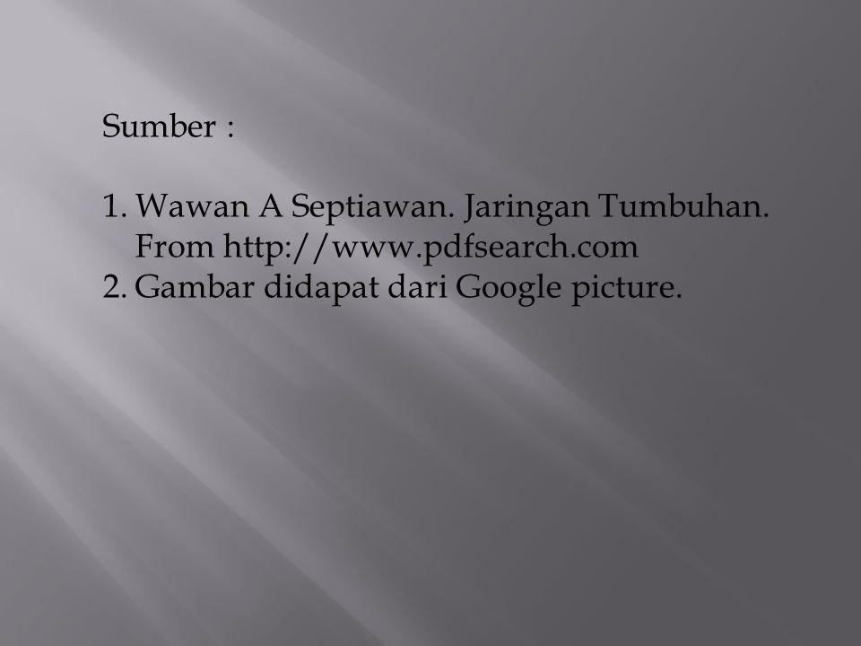 Sumber : 1.Wawan A Septiawan. Jaringan Tumbuhan. From http://www.pdfsearch.com 2.Gambar didapat dari Google picture.
