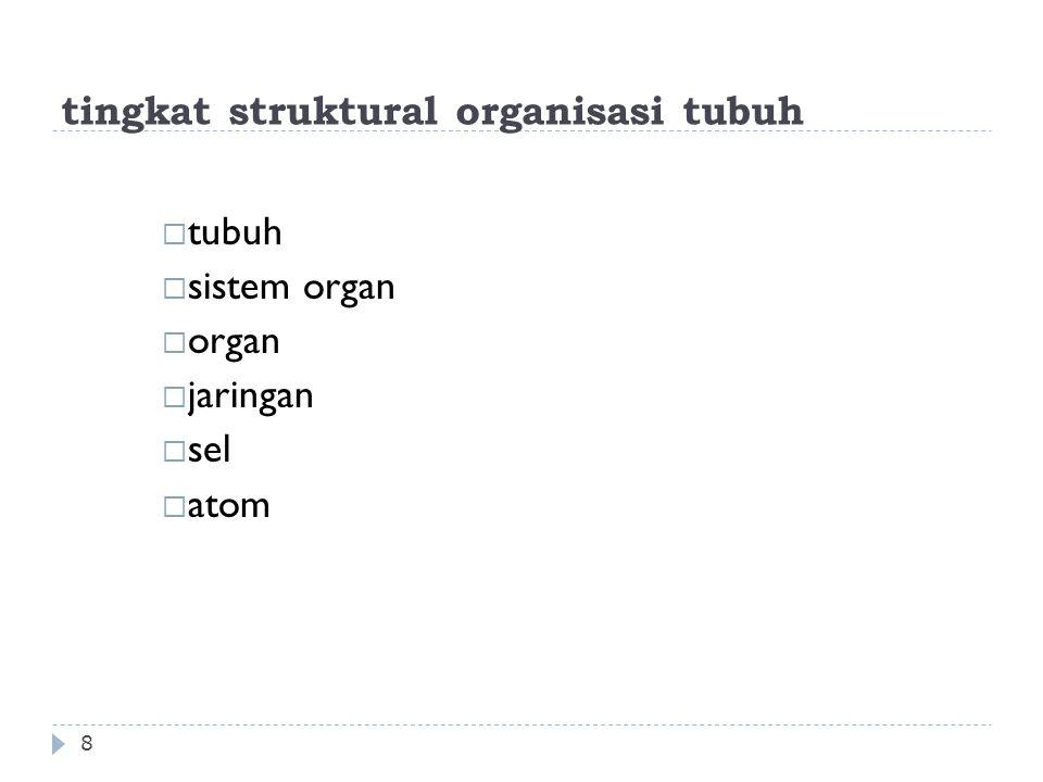 tingkat struktural organisasi tubuh 8  tubuh  sistem organ  organ  jaringan  sel  atom