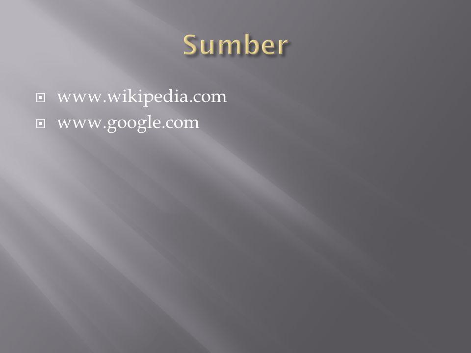  www.wikipedia.com  www.google.com