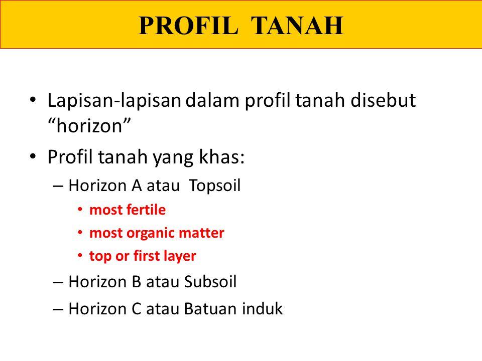 "PROFIL TANAH Lapisan-lapisan dalam profil tanah disebut ""horizon"" Profil tanah yang khas: – Horizon A atau Topsoil most fertile most organic matter to"