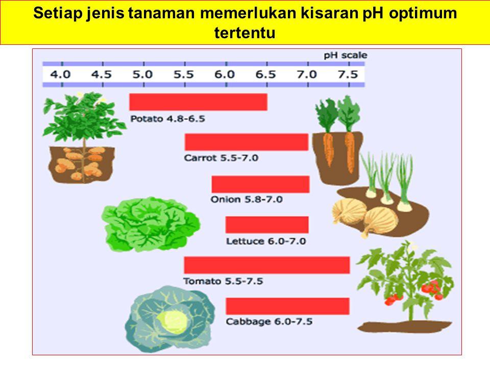 Setiap jenis tanaman memerlukan kisaran pH optimum tertentu