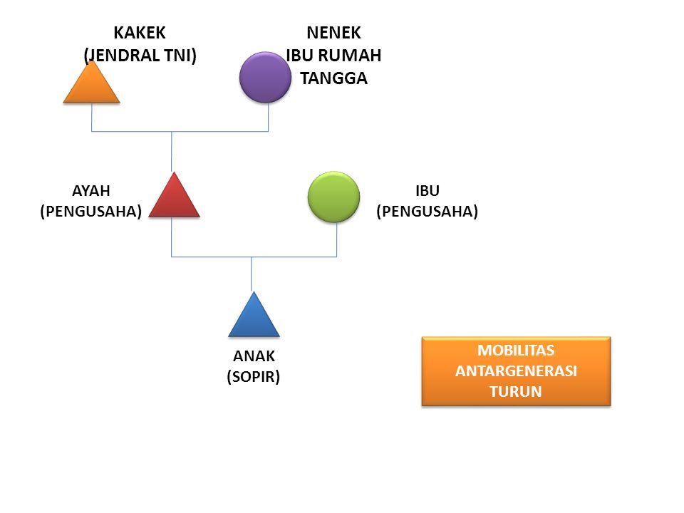 KAKEK (JENDRAL TNI) NENEK IBU RUMAH TANGGA AYAH (PENGUSAHA) IBU (PENGUSAHA) ANAK (SOPIR) MOBILITAS ANTARGENERASI TURUN