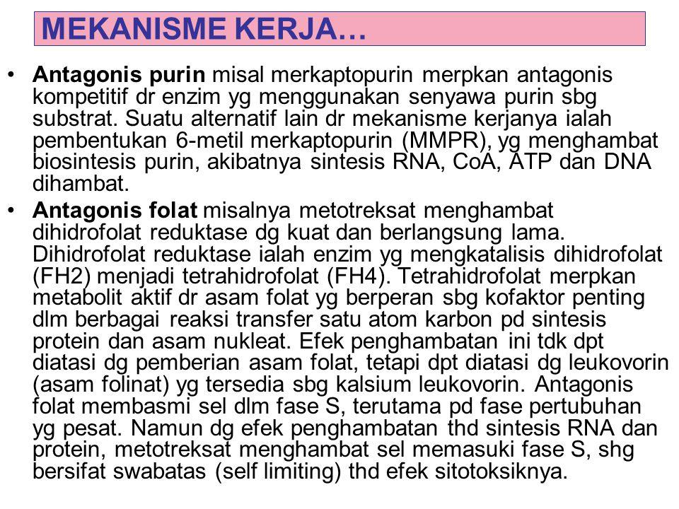 MEKANISME KERJA… Antagonis purin misal merkaptopurin merpkan antagonis kompetitif dr enzim yg menggunakan senyawa purin sbg substrat. Suatu alternatif