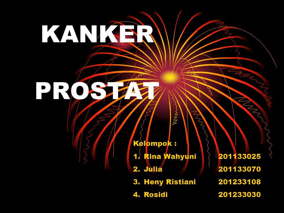 KANKER PROSTAT Kelompok : 1.Rina Wahyuni201133025 2.Julia201133070 3.Heny Ristiani201233108 4.Rosidi201233030