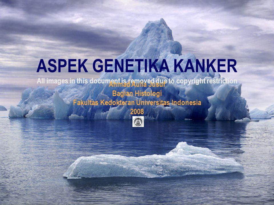 Thursday, April 16, 2015 Aspek Genetika Kanker/AAJ/Histologi FKUI/20082 Agenda  Pendahuluan  Definisi  Oncogen  Tumor supressor genes  Stabilitas genomik  Kontrol siklus sel