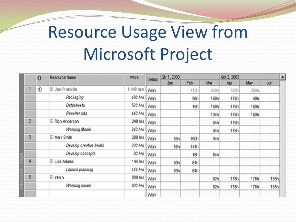 Resource Usage View from Microsoft Project