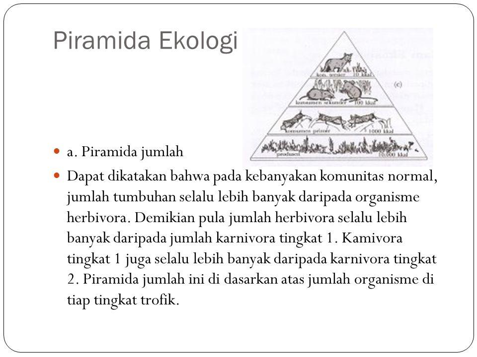 Piramida Ekologi a. Piramida jumlah Dapat dikatakan bahwa pada kebanyakan komunitas normal, jumlah tumbuhan selalu lebih banyak daripada organisme her