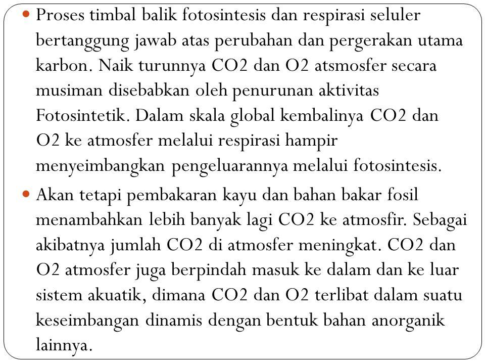 Proses timbal balik fotosintesis dan respirasi seluler bertanggung jawab atas perubahan dan pergerakan utama karbon. Naik turunnya CO2 dan O2 atsmosfe