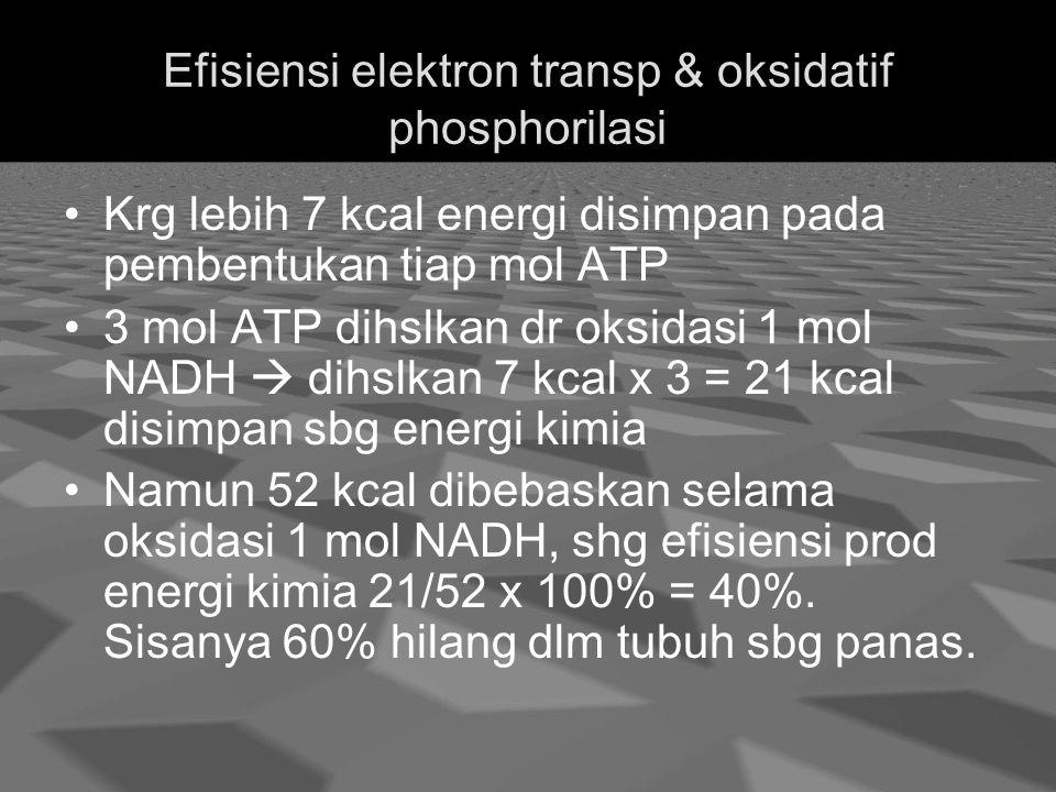 Efisiensi elektron transp & oksidatif phosphorilasi Krg lebih 7 kcal energi disimpan pada pembentukan tiap mol ATP 3 mol ATP dihslkan dr oksidasi 1 mol NADH  dihslkan 7 kcal x 3 = 21 kcal disimpan sbg energi kimia Namun 52 kcal dibebaskan selama oksidasi 1 mol NADH, shg efisiensi prod energi kimia 21/52 x 100% = 40%.