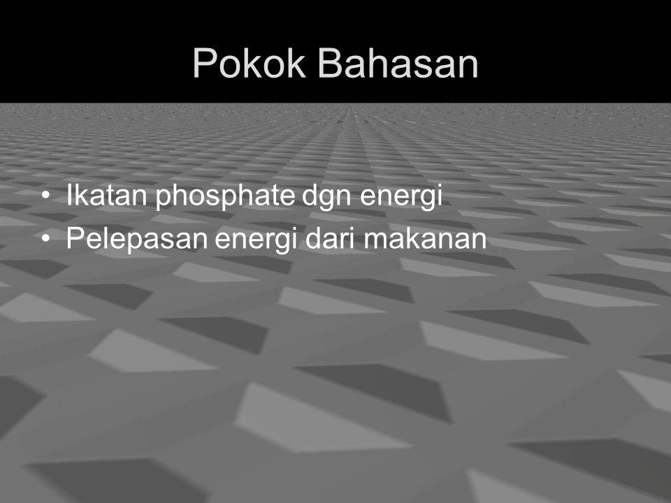 Pokok Bahasan Ikatan phosphate dgn energi Pelepasan energi dari makanan