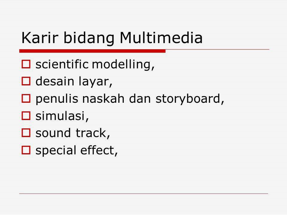 Karir bidang Multimedia  scientific modelling,  desain layar,  penulis naskah dan storyboard,  simulasi,  sound track,  special effect,