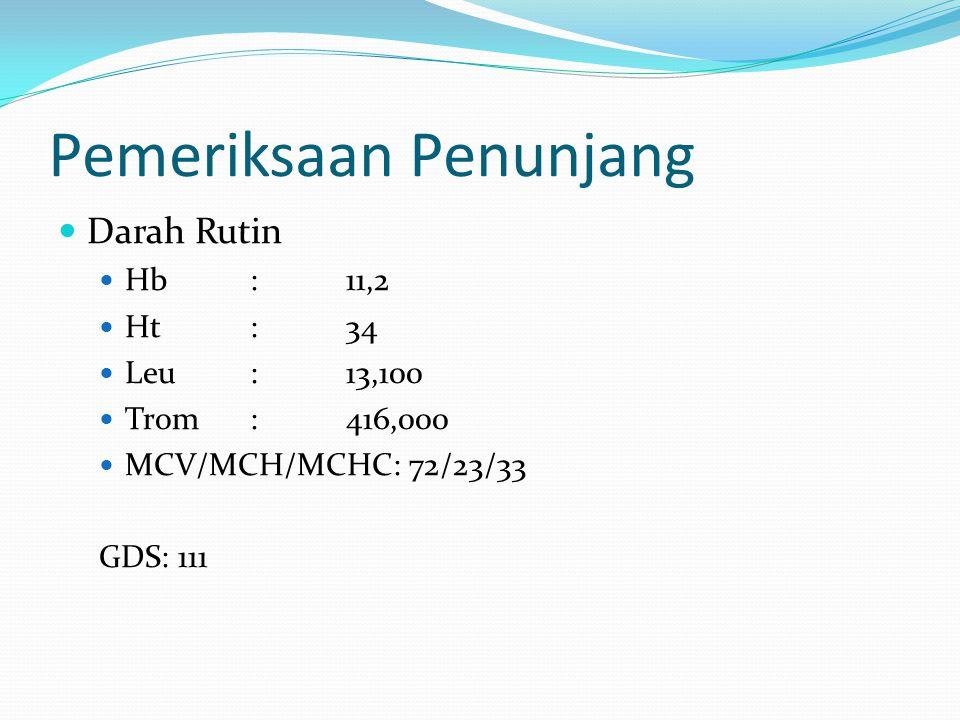 Pemeriksaan Penunjang Darah Rutin Hb:11,2 Ht:34 Leu:13,100 Trom:416,000 MCV/MCH/MCHC: 72/23/33 GDS: 111