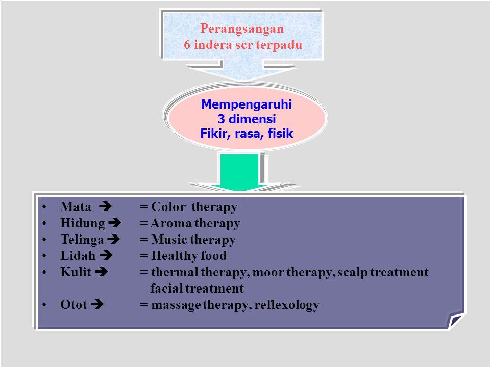 Perangsangan 6 indera scr terpadu Mempengaruhi 3 dimensi Fikir, rasa, fisik Mata  = Color therapy Hidung  = Aroma therapy Telinga  = Music therapy