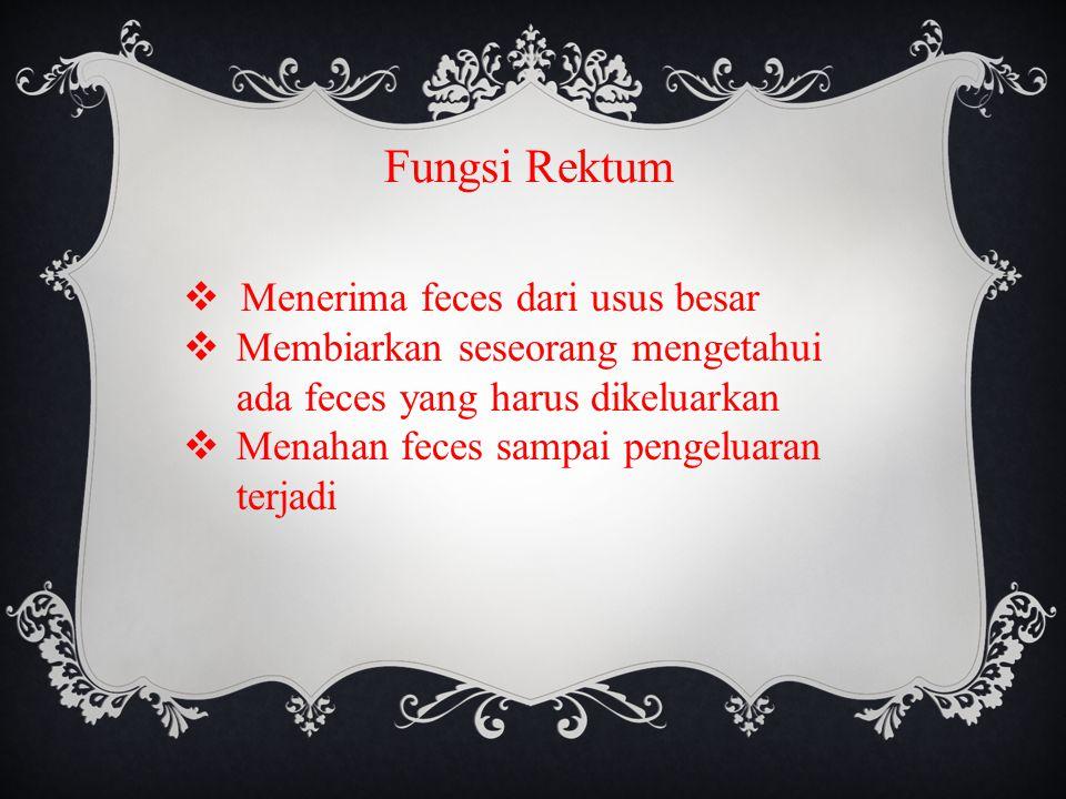 Fungsi Rektum  Menerima feces dari usus besar  Membiarkan seseorang mengetahui ada feces yang harus dikeluarkan  Menahan feces sampai pengeluaran terjadi